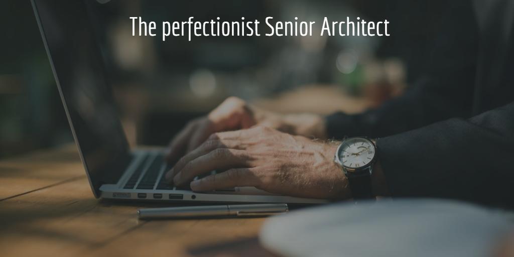 The perfectionist Senior Architect